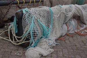 Lauwersoog, im Fischerhafen
