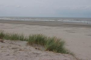 Ameland, Insel, Strand