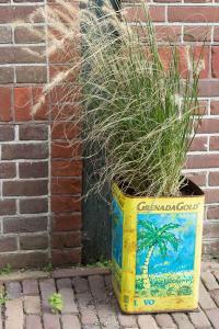 bepflanzte Blechdose vor dem Eingang