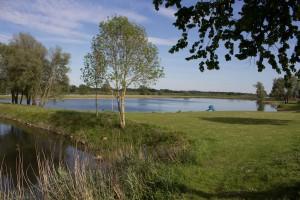 See angelegt für Feriendorf, Bäume abgeholzt, schade