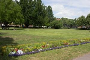 immer wieder eine Grünfläche in der Stadt