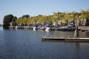 Haven De Kolk