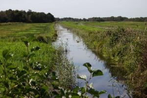 Kanal im Nationalpark